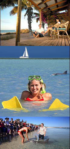 Monkey Mia Dolphin Resort - Whitsundays Accommodation